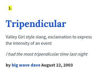 wave rider urban dictionary