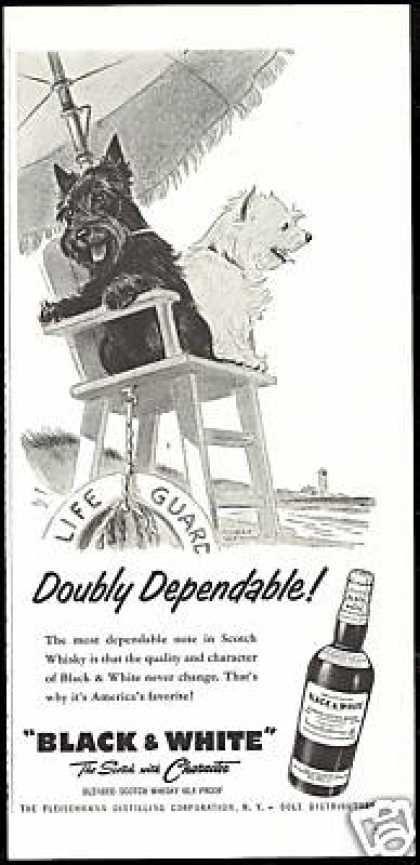 Detalle de imagen de:Black and White Scottish Terrier lifeguard ad