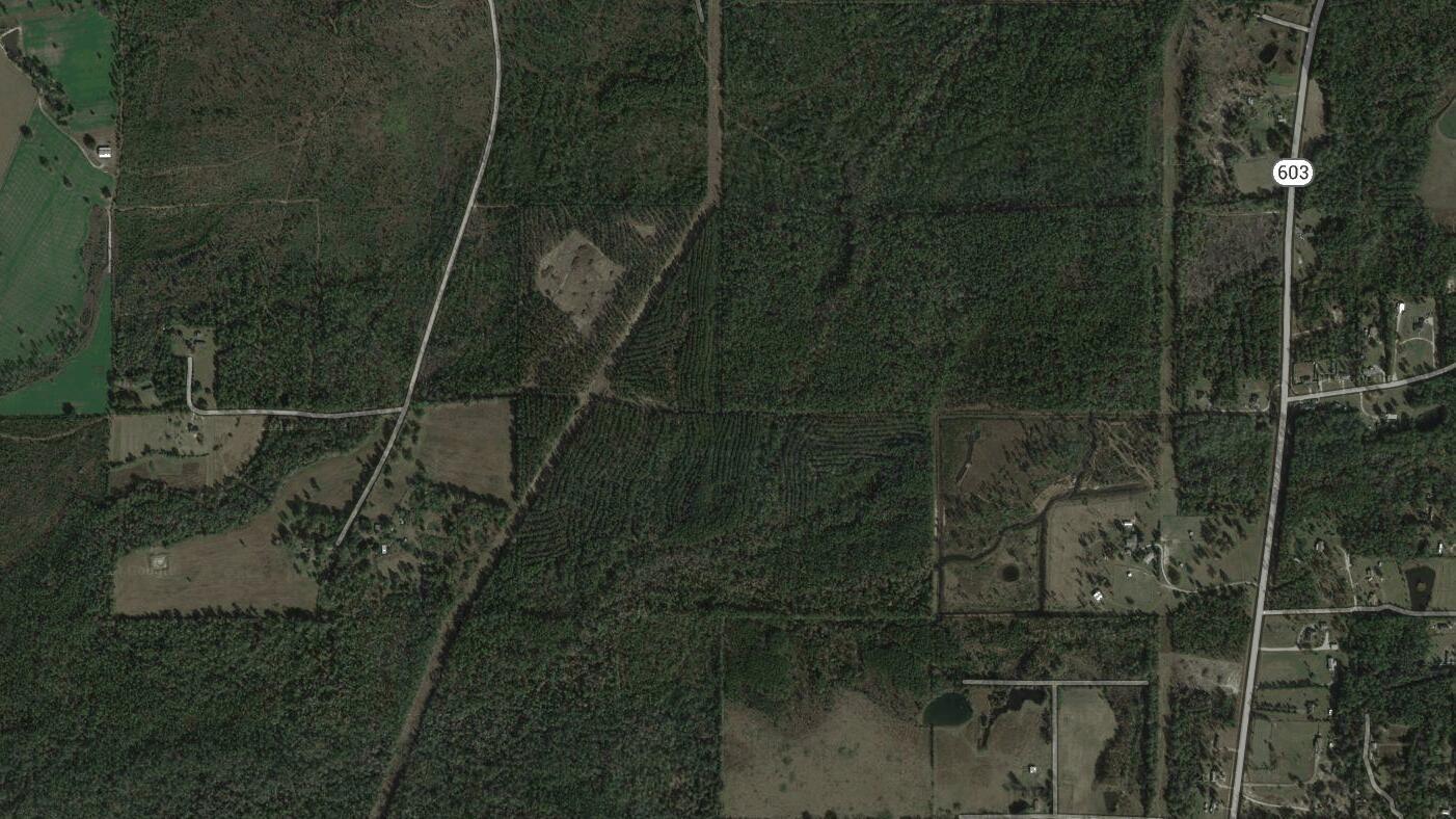 100 Acres in Hancock County, MS