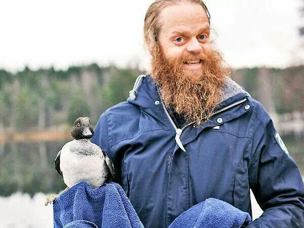 Norwegian man rescues duck who was stuck in the ice.