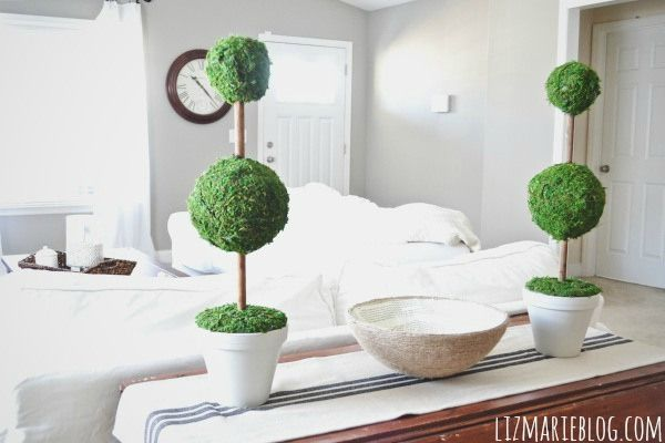 Fancy Pants Topiaries Assuming You Can Find Moss 31 Cheap And