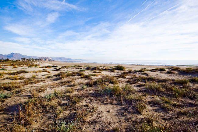 Playa Serradal, Castelló de la Plana