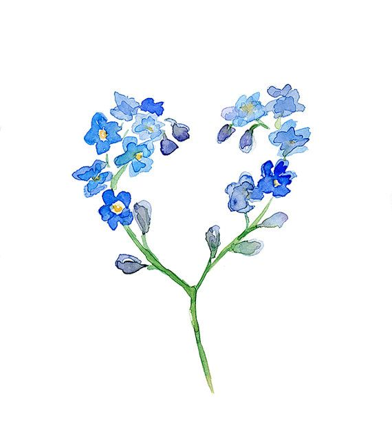 ff9a3cd05e0c1 Flower Watercolor Painting - Forget me not flower - Fine Art Print - Zen  Art Flower illustration Home decor Blue Flower Heart love Painting