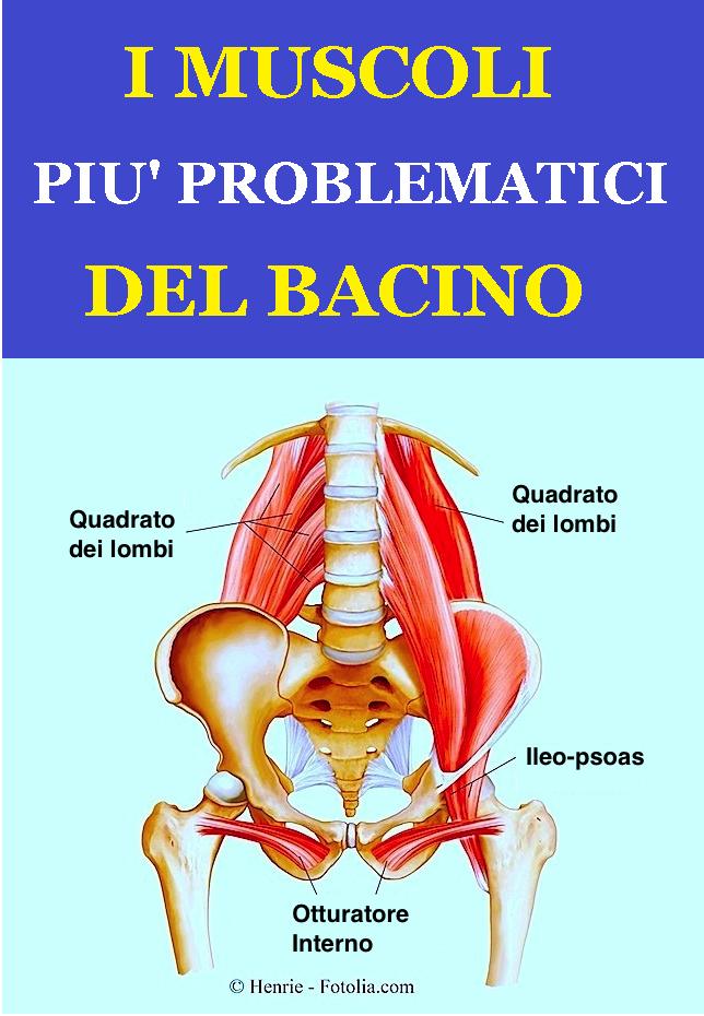Anatomia dei muscoli del bacino - Dolore muscolare..
