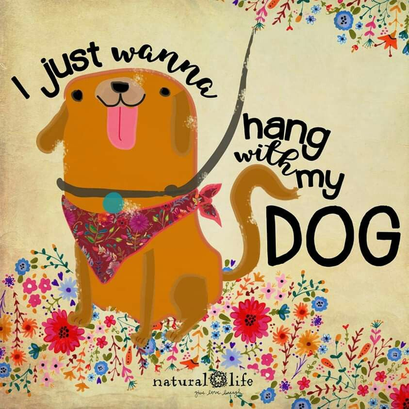 Pin By Jo Wiest On Pets Dog Love Dogs Dog Quotes