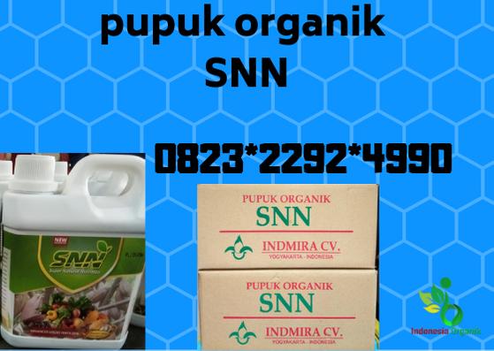 Pin Di Promo 0823 2292 4990 Aplikasi Pupuk Gandasil B Untuk Padi Idi Rayeuk Asli Pupuk Organik Untuk Padi Produsen Pupuk Untuk Padi