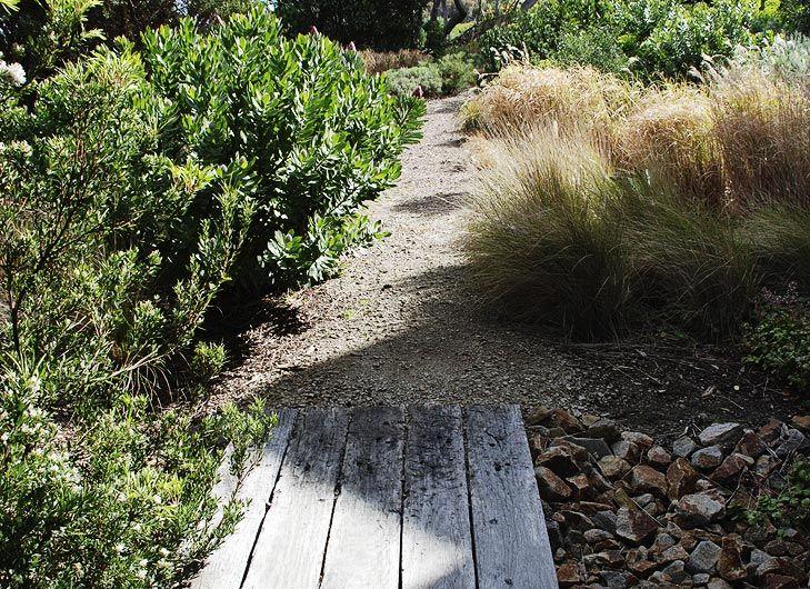If you plant a coastal garden, retain indigenous plants.