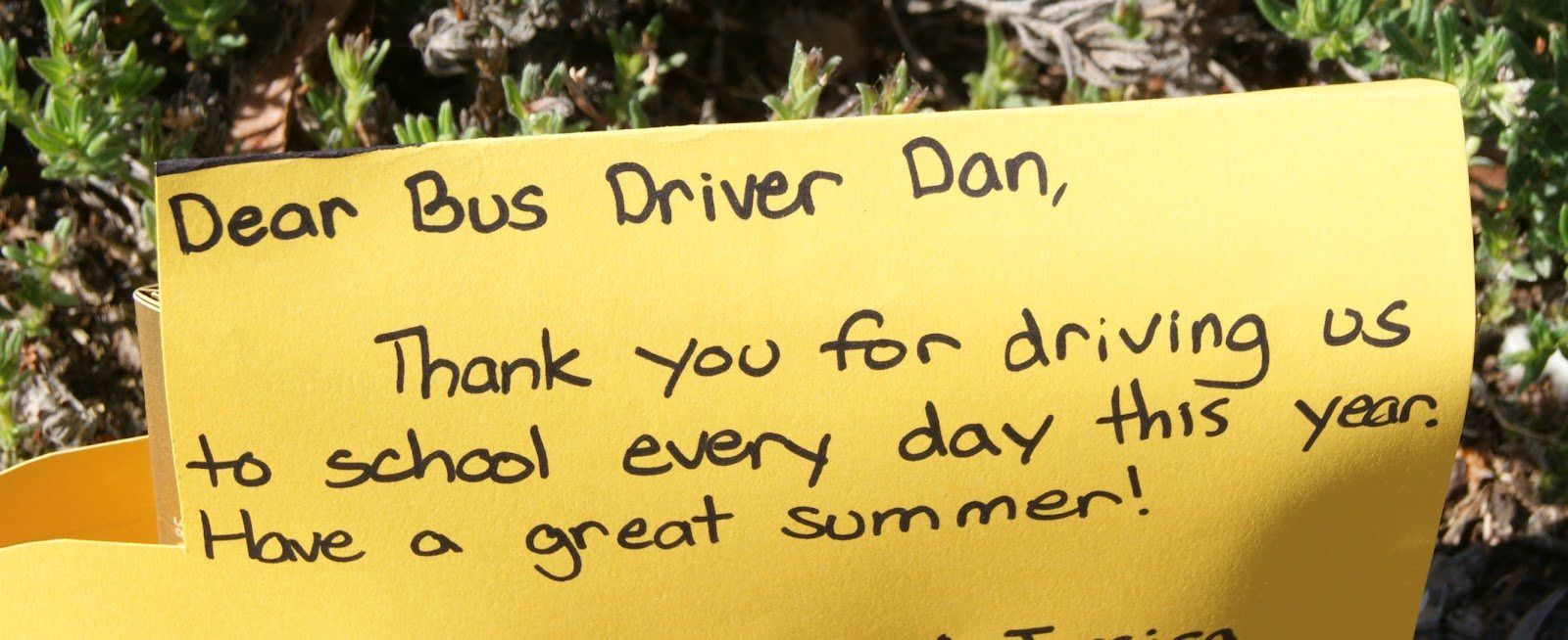 Thank You Letter Coach From Parents Appreciation Sample For Accountants  Message Environmental Lawyer What Write Card