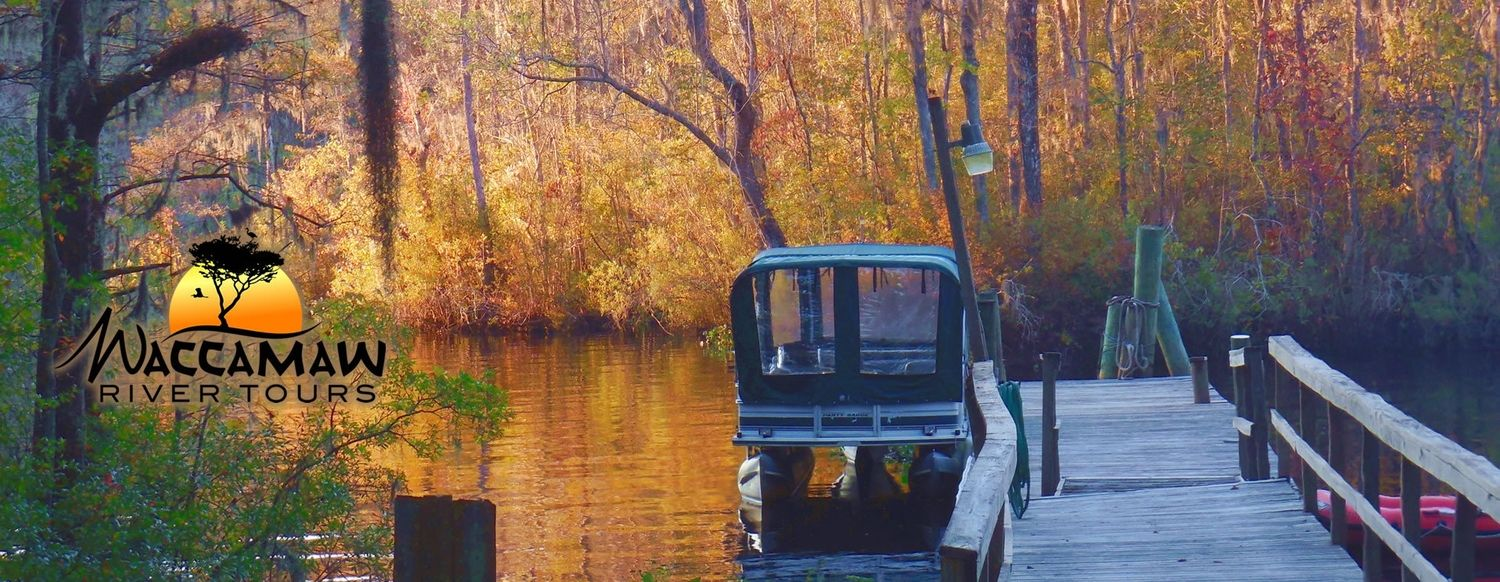 Myrtle Beach Tours on the Waccamaw River Boat tours