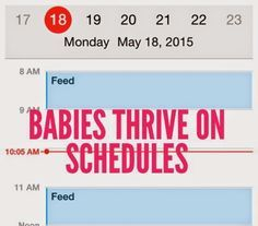 schedules for babies