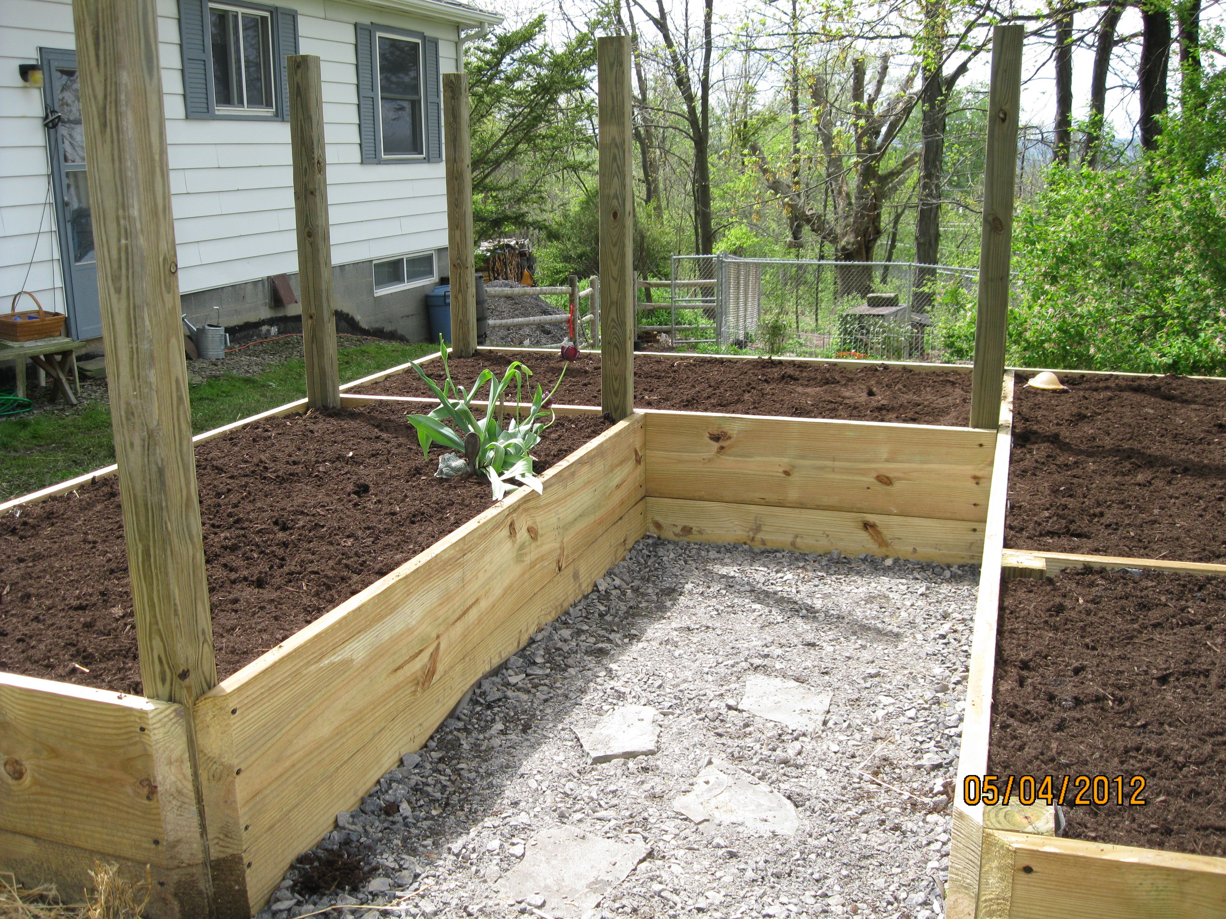 Raised beds vegetable garden gardening alaskan style for Garden bed fence ideas