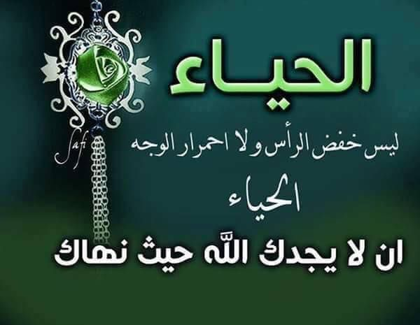 الحياء ليس حياء نساء باب الحارة ههههه بل الحياء في كل شيئ Arabic Calligraphy Calligraphy