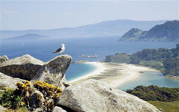 Islas Cies. (Pontevedra). Galicia. Spain