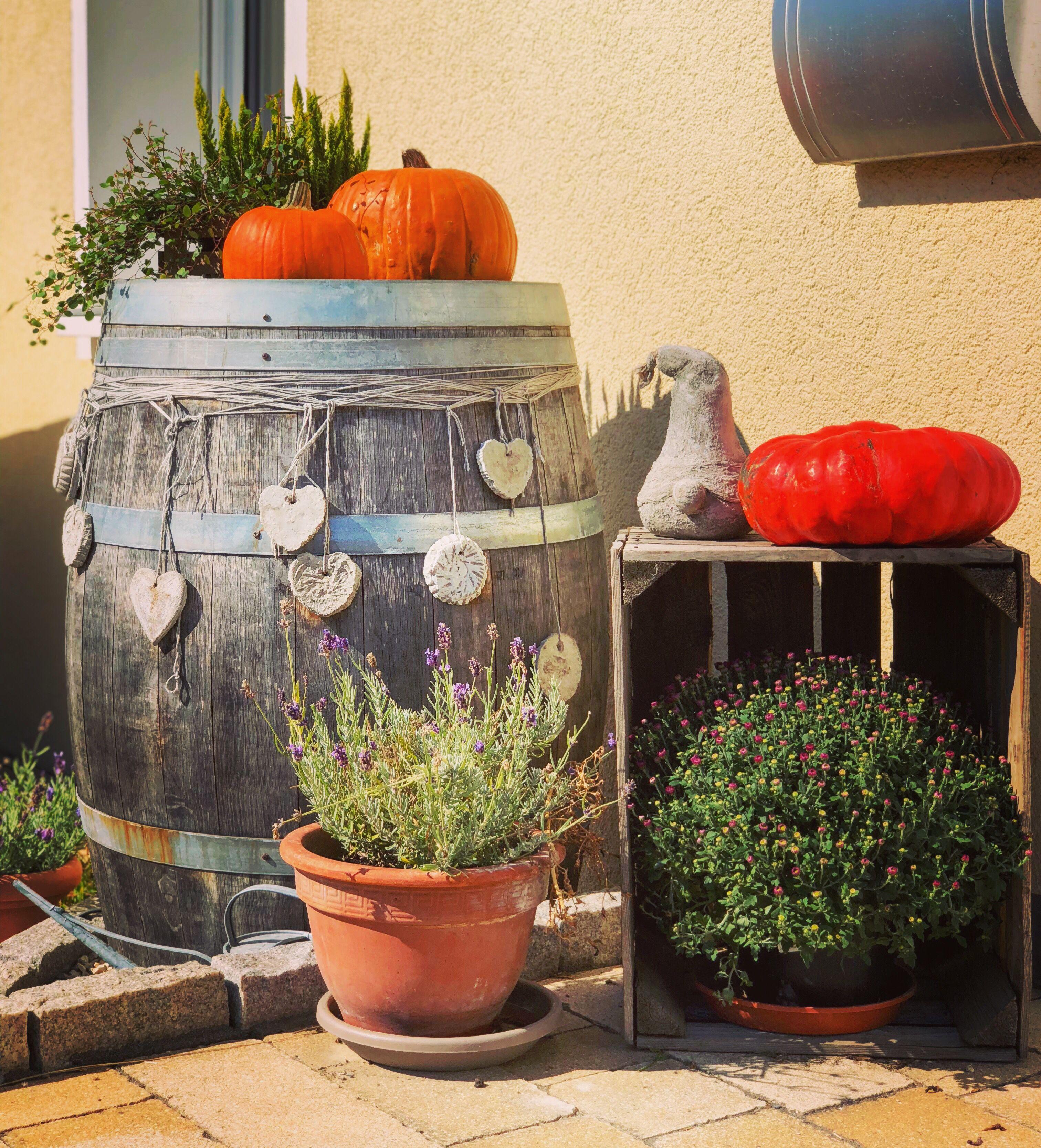 Garten Herbst Weinfass Deko Hauseingang Barrel Kurbis Weinfass Deko Weinfass Weinfass Garten