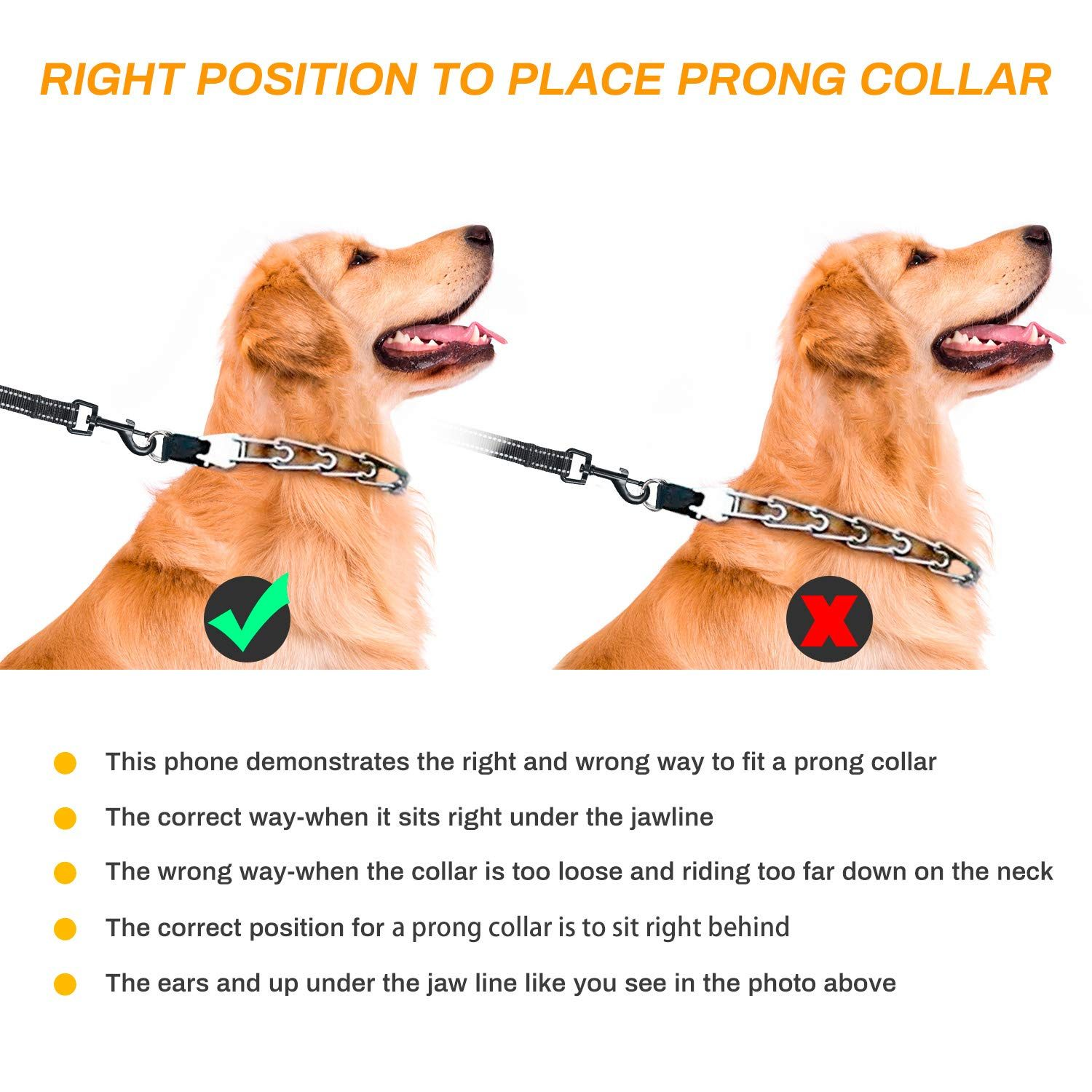 Winkeyes Dog Prong Collar For Training Harmless Dog Pinch Collar
