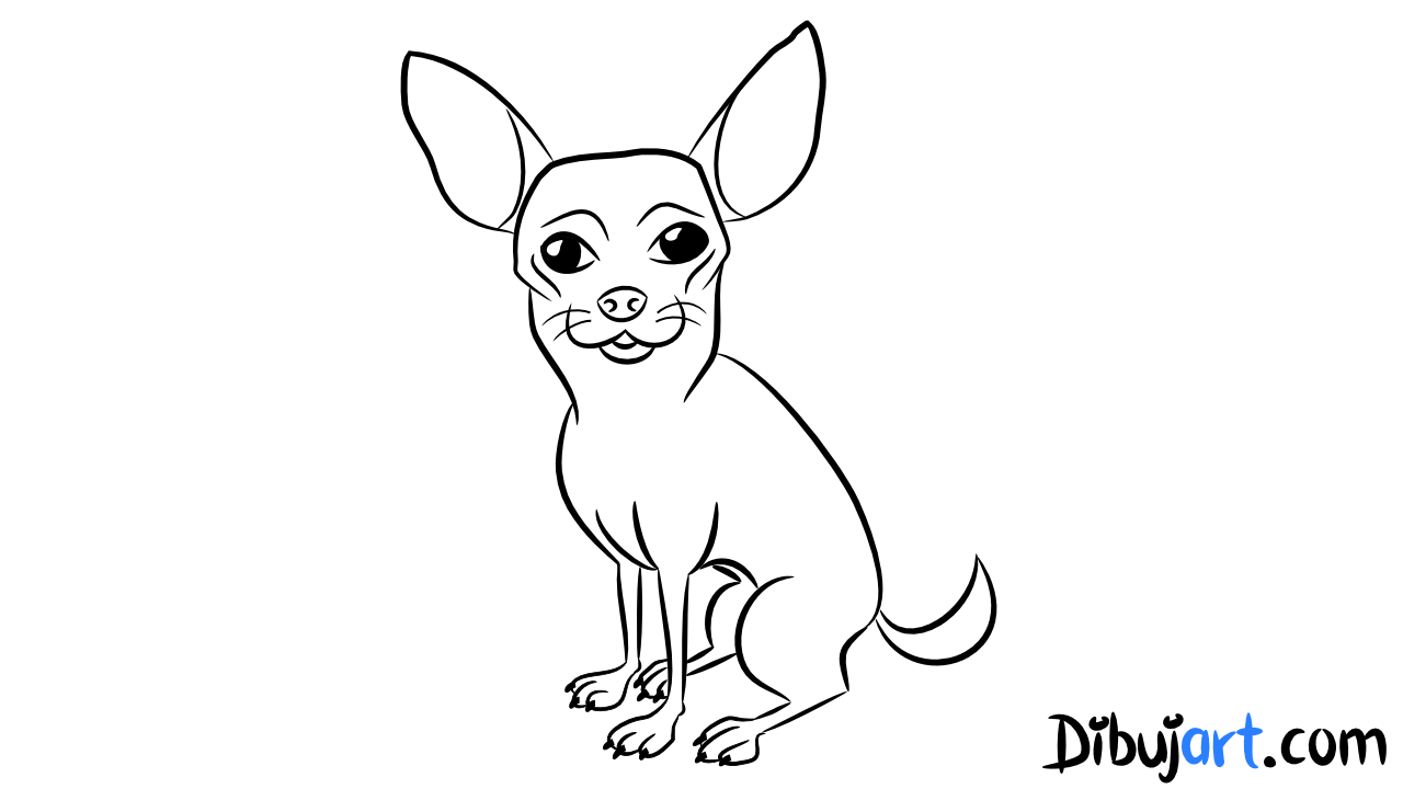 Como dibujar un Chihuahua paso a paso | dibujart.com el sitio para ...