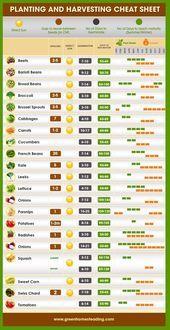 Wann pflanzen Sie Ihren Gemüsegarten? # Gärtnern #wenn Sie einen Gemüsegarten anlegen …  – uncategorized
