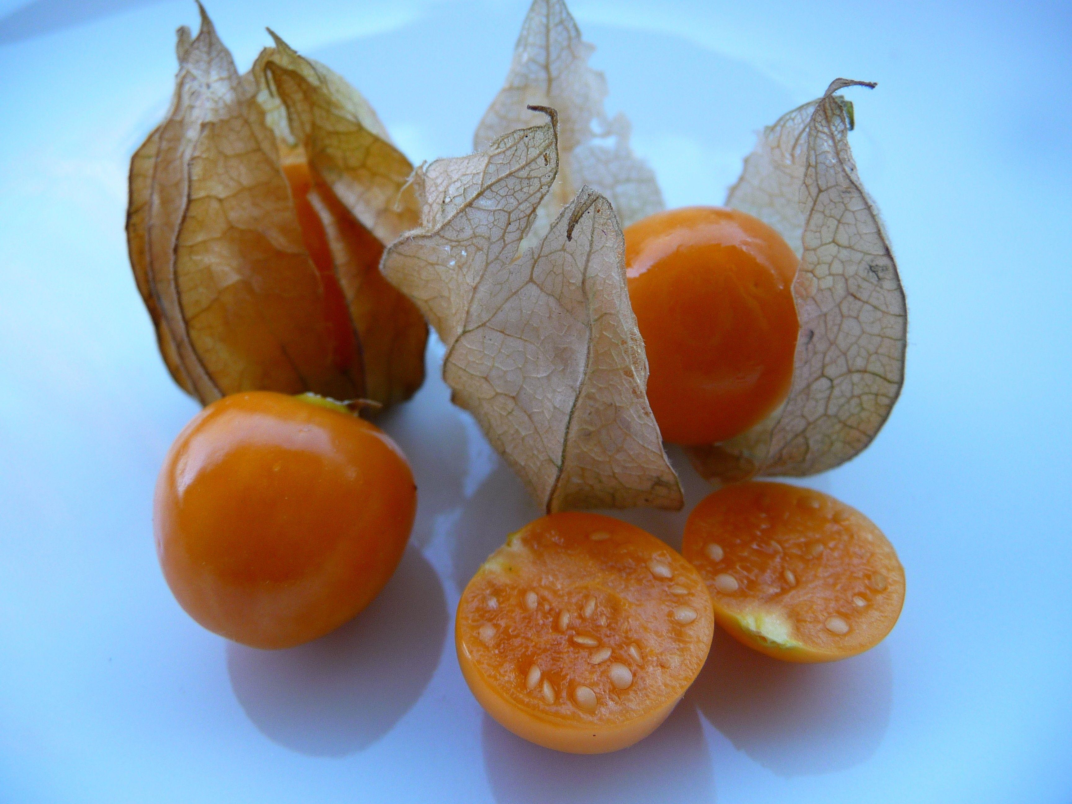 فوائد الحرنكش للرجال والسيدات فوائد الحرنكش للشعر فوائد الحرنكش للتخسيس Cape Gooseberry Fruit Benefits Physalis