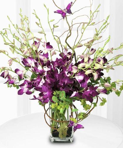 Purple Orchid Majesty Orchid Vase Orchid Flower Arrangements Purple Orchids