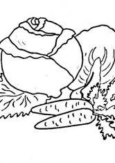 Раскраска Капуста и морковь | Раскраски, Бумажные куклы, Ягоды