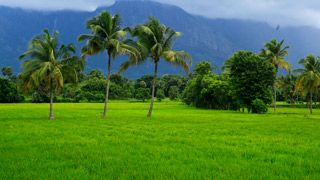 Download High Resolution Images Kerala Tourism Nature Images Hd Nature Nature Images