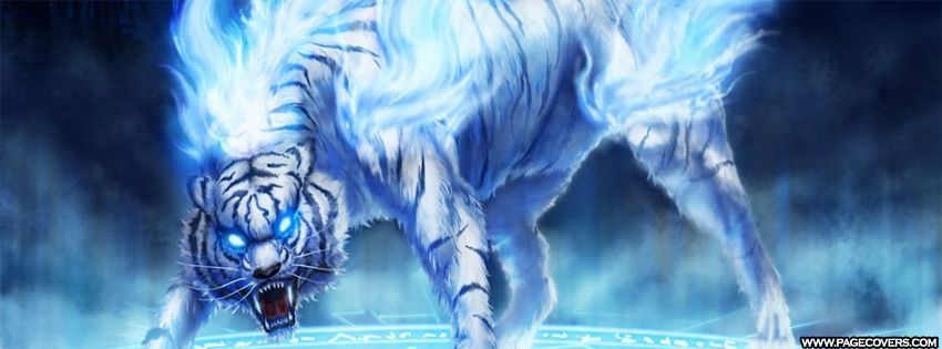 White Lion In Blue Fire Facebook Cover Pagecovers Cool Pics
