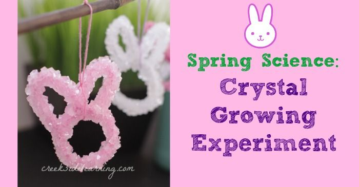 Growing crystals with borax (soda crystals) ...super easy, cool science experiments for kids. Use a pipe cleaner in any shape, lower it into the borax mixture. Crystals form within