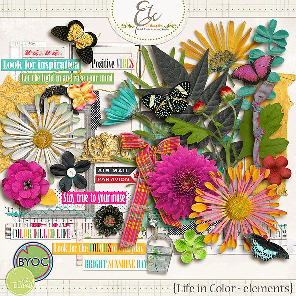 Life in Color Elements    Etc by Danyale #thelilypad #digitalscrapbooking #digiscrap #memorykeeping #paint #bold #color #flower #floral #summer #sunshine #butterfly
