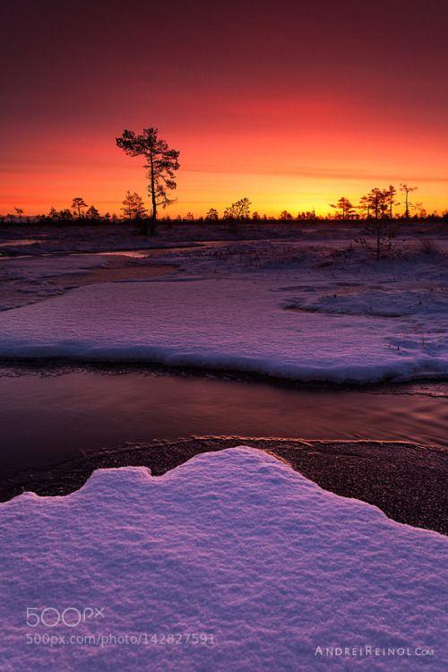 365travelquotes Cool Landscapes Landscape Photography Winter Pictures