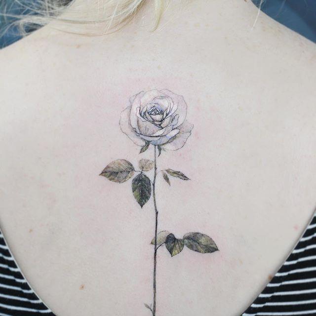 """타투이스트 꽃 on Instagram: """"A white rose #tattoo#flower#flowerart#flowertattoo#colortattoo#타투#꽃#꽃타투#타투이스트꽃 #tattooistflower"""""""