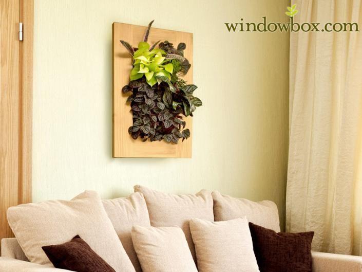 Pre-Populated Living Wall Art | New home | Pinterest | Living walls ...