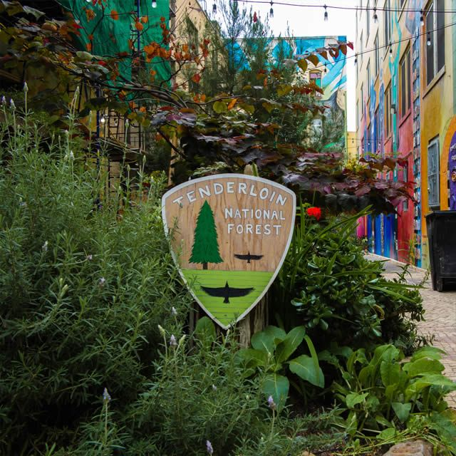 Tenderloin National Forest, San Francisco.  Starting in 1989, the Tenderloin National Forest was brought to life from a dingy alley by artist Darryl Smith and friends. What a terrific idea!  On my to-visit list.