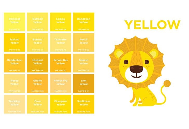 pantone colors board book introduces tots to 180 shades | pantone