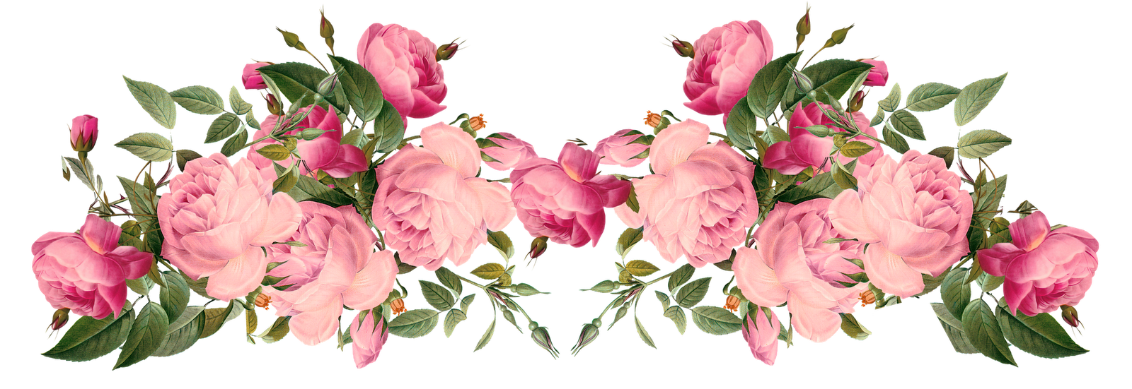 Pink Rose Borders Free Pink Now In 2018 Pinterest Borders
