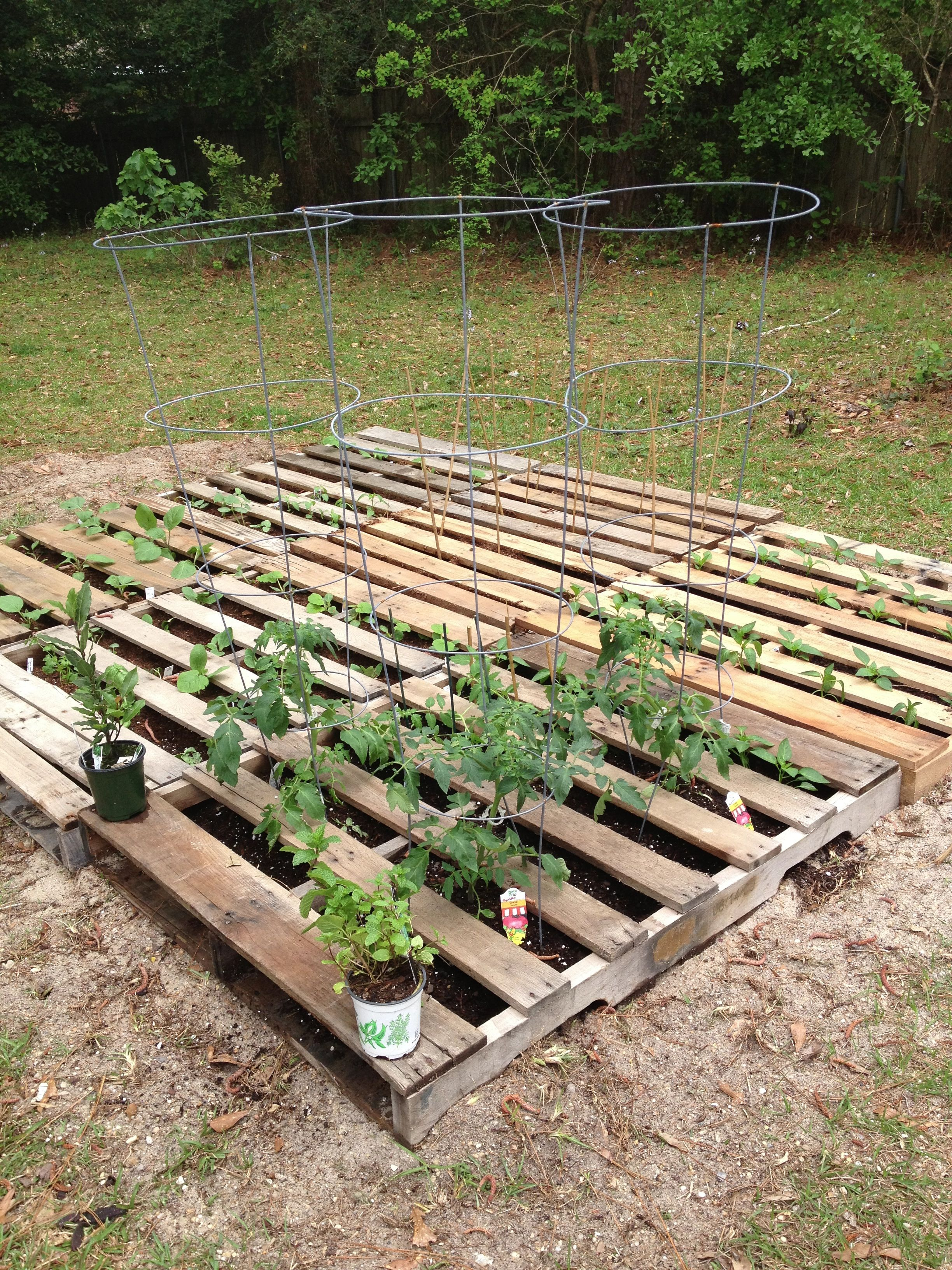Our Pinterest Inspired Pallet Garden Was So Quick And Easy To Set