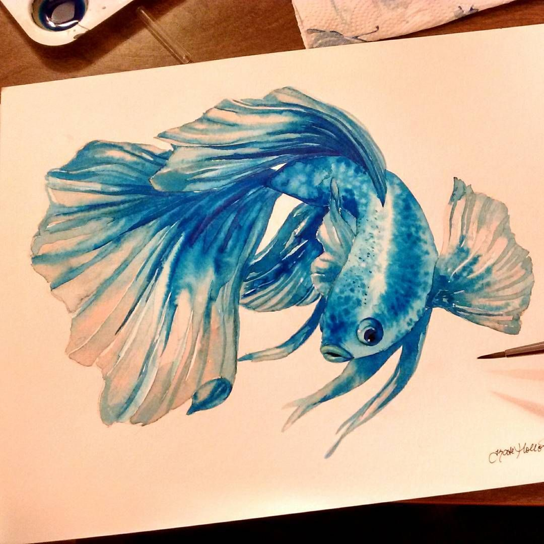 Kateholloman The Betta Fish A 9x12 Watercolor Painting This