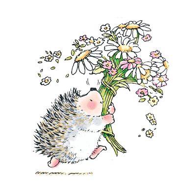 hedgehog bouquet Product No: 1444K | Hedgehogs | Pinterest | Dibujo ...