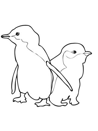 Two Little Blue Penguins Coloring Page Penguin Coloring Pages