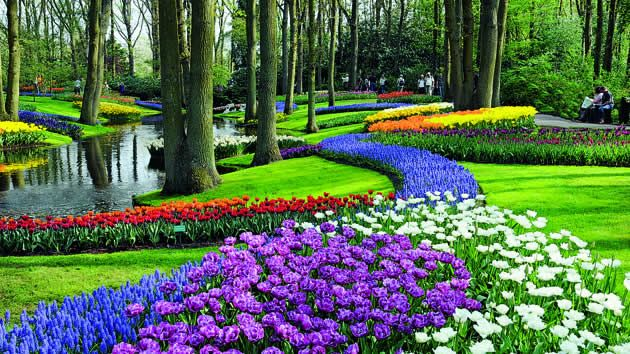 Jardines floridos buscar con google jardines patios y for Jardines con gravilla de colores