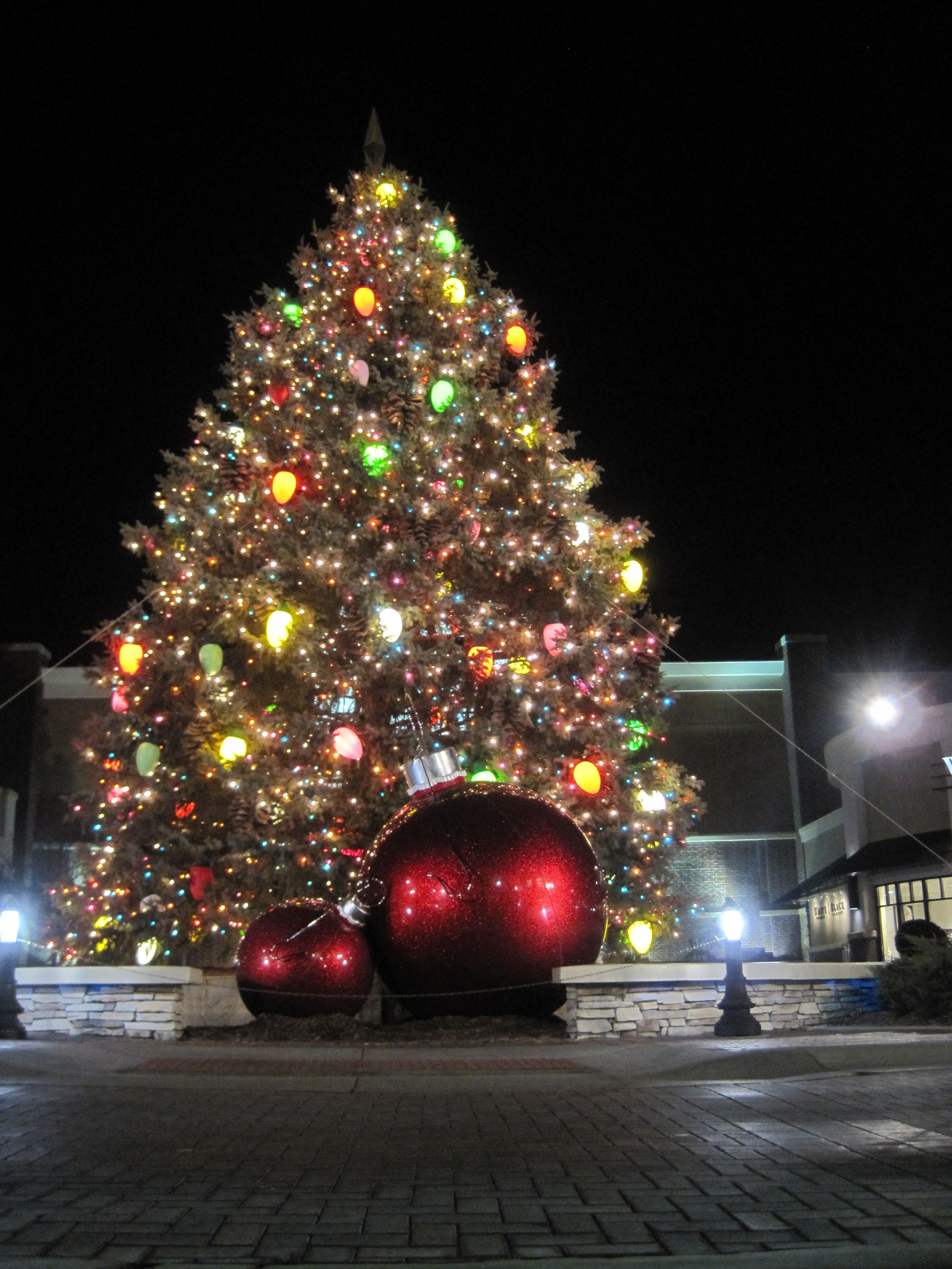 Tree at Village Pointe Omaha NE to OMAHA
