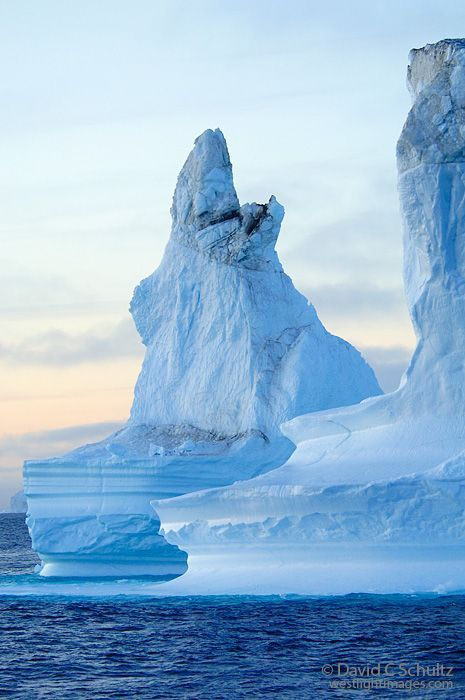 Icebergs at sunset in the Scoresbysund Fjord, Greenland
