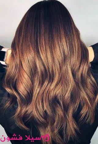 صبغات شعر عسلي نصائح لصبغ الشعر في المنزل سيلا فشون Hair Styles Beauty Hair