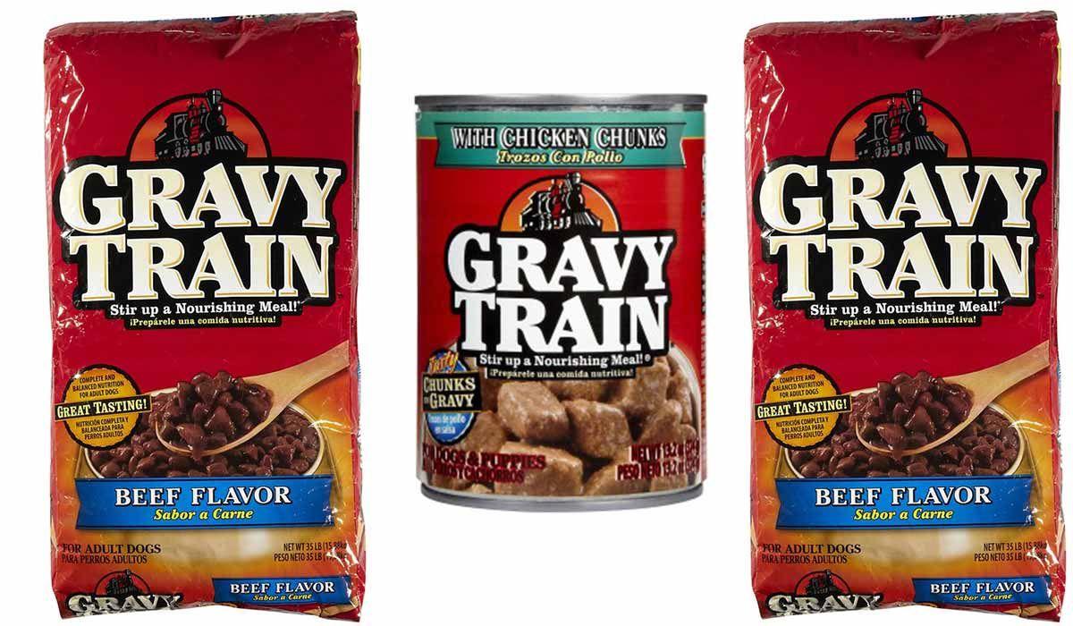 The Top Secrets of Gravy Train Dog Food! Dog food