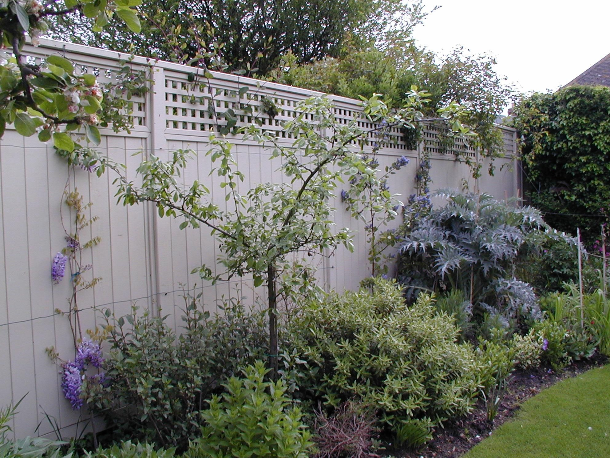 Attractive Painted Trellis Ideas Part - 10: Painted Avenue And Trellis