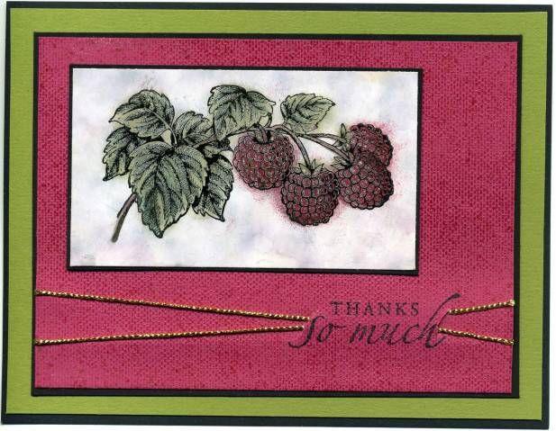 Fruit of the Spirit Raspberries_rdm