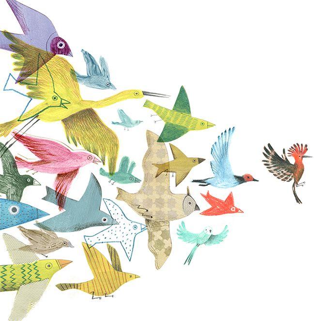 la huppe, l'oiseau qui vient rendre visite à Anylou...