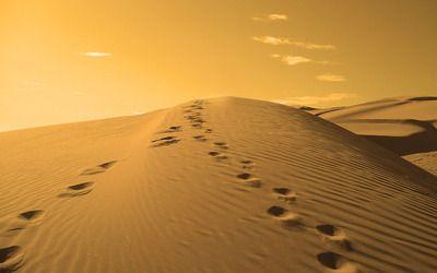 Footprints On A Sand Dune Hd Wallpaper What A Beautiful World Nature Wallpaper Sand