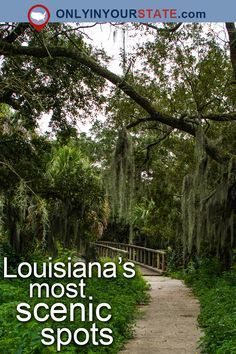 Travel  Louisiana  Attractions  USA  Hidden Gems  Things To Do  Day Trips