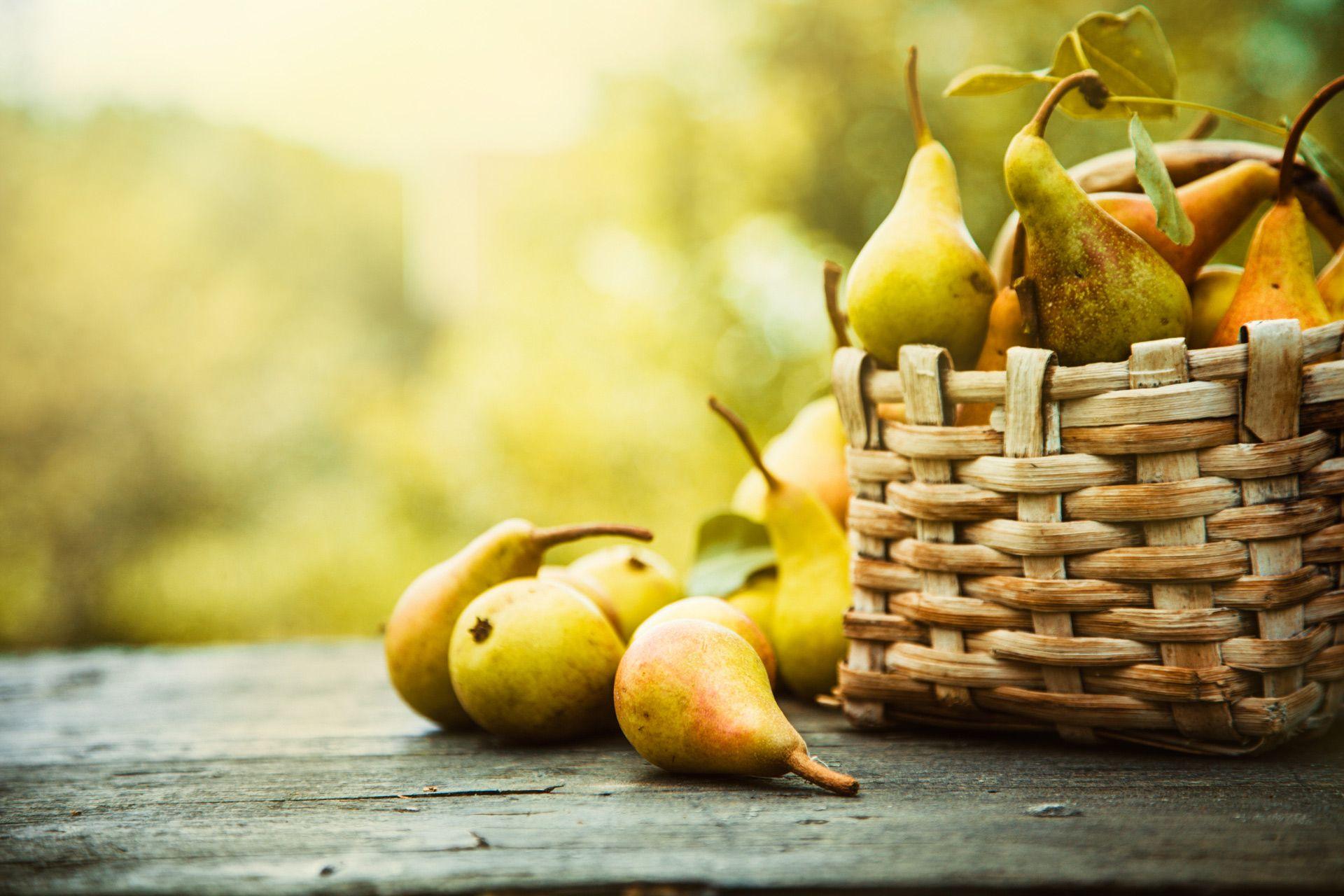 Wunderfrucht Birne #pear #loveit #autumn #health #didyouknow #goodtoknow #facts #allyouneedtoknow #schongewusst #lidlösterreich