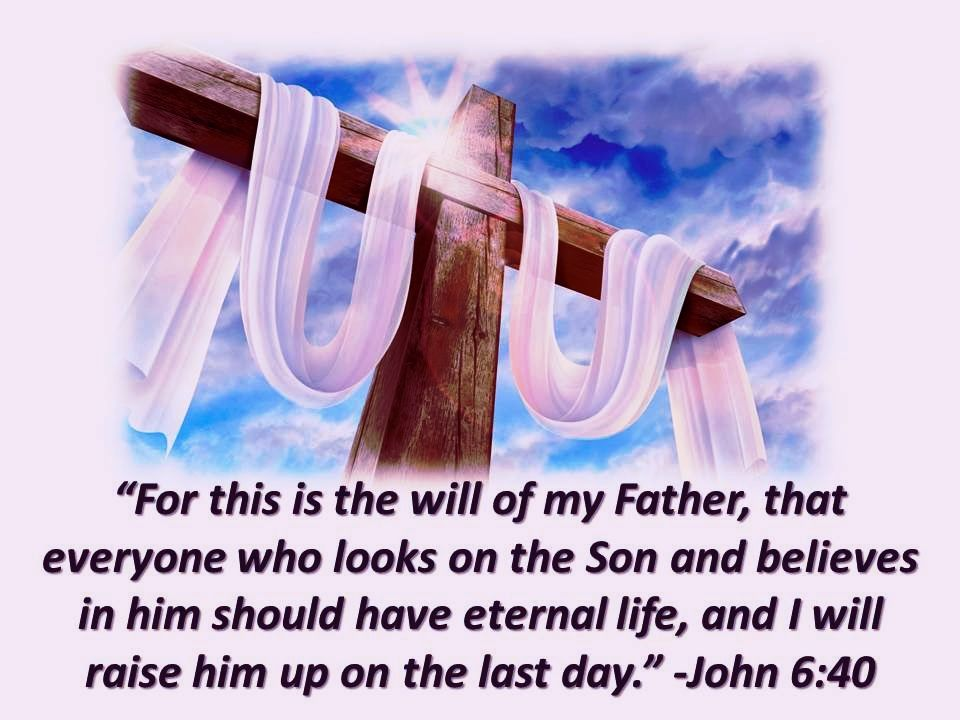 John 6:40   Son of god, Jesus is lord, Lord and savior